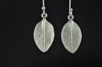 Muttonbird scrub Sterling silver earrings